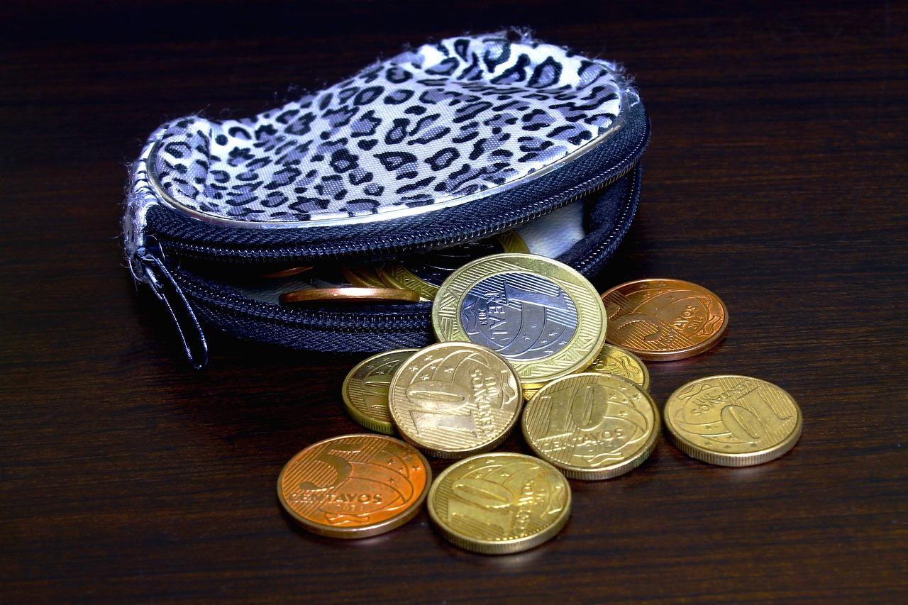 purse-758770_1280