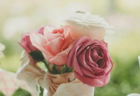 roses-983972_960_720