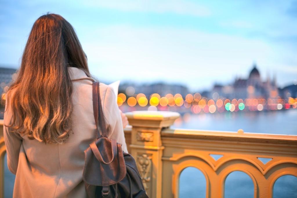 back-bridge-budapest-762075